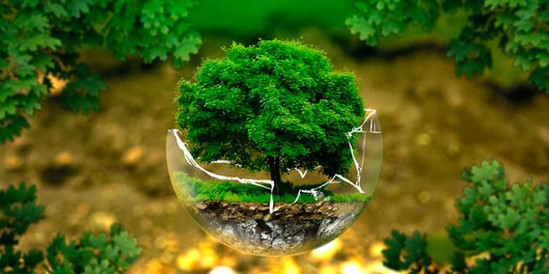 magaly-gonzalez-instituto-sostenibilidad-startup-alcobendas